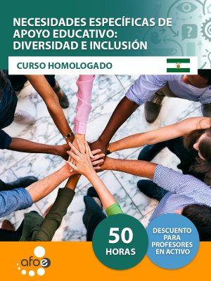 necesidades-especificas-de-apoyo-educativo-inclusion-diversidad-afoe
