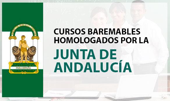 Consejería de la Junta de Andalucía